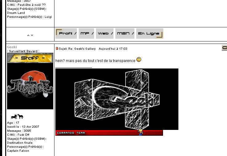 Le forum SSBB d'il y a quelques années - Page 2 Sans_t10