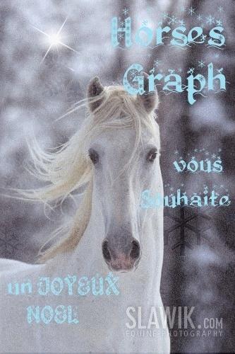 *HorsesGraph*