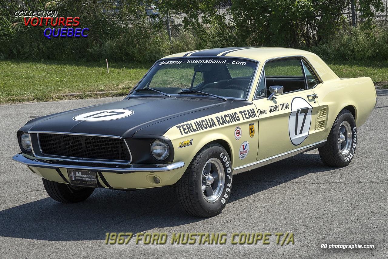 L'équipe de course Terlingua de Shelby-American en 1967 1967_m10