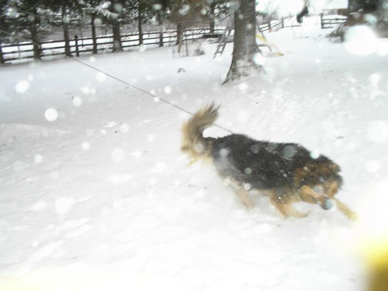 Snow Pc150015
