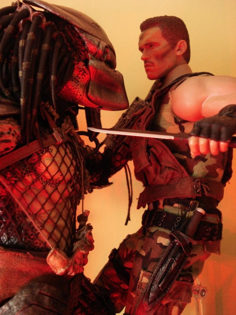collec redfield MAJ 20/04/11 ->  Predator Family Dsc08214