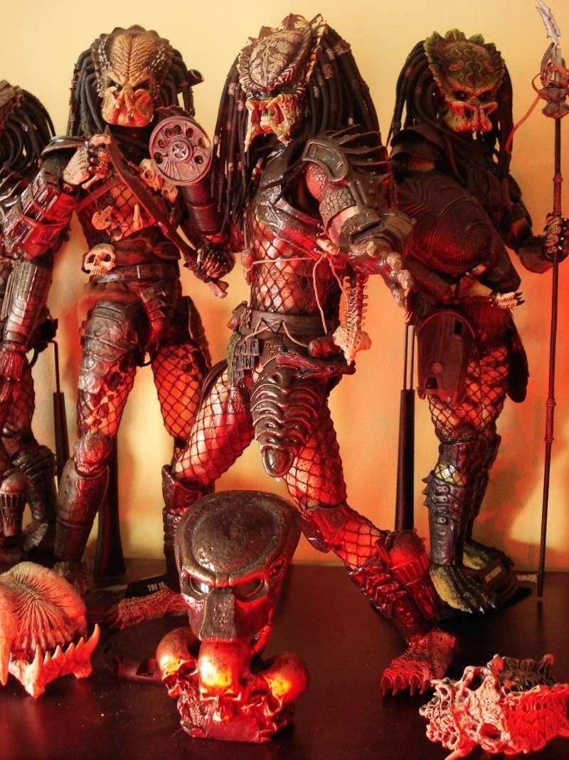 collec redfield MAJ 20/04/11 ->  Predator Family Dsc08311