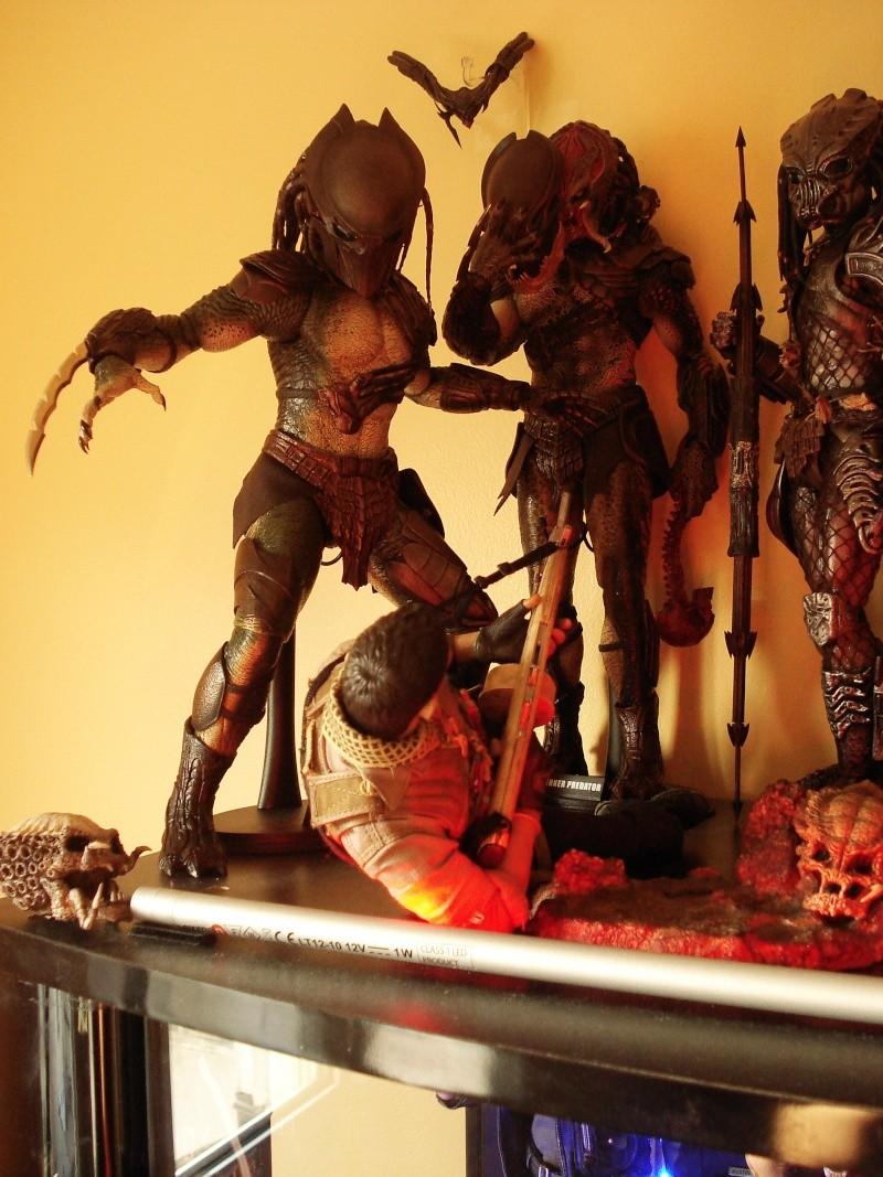 collec redfield MAJ 20/04/11 ->  Predator Family Dsc08317