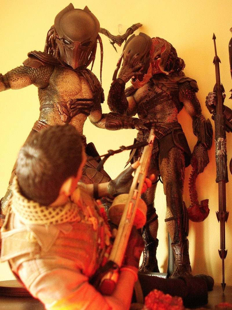 collec redfield MAJ 20/04/11 ->  Predator Family Dsc08318