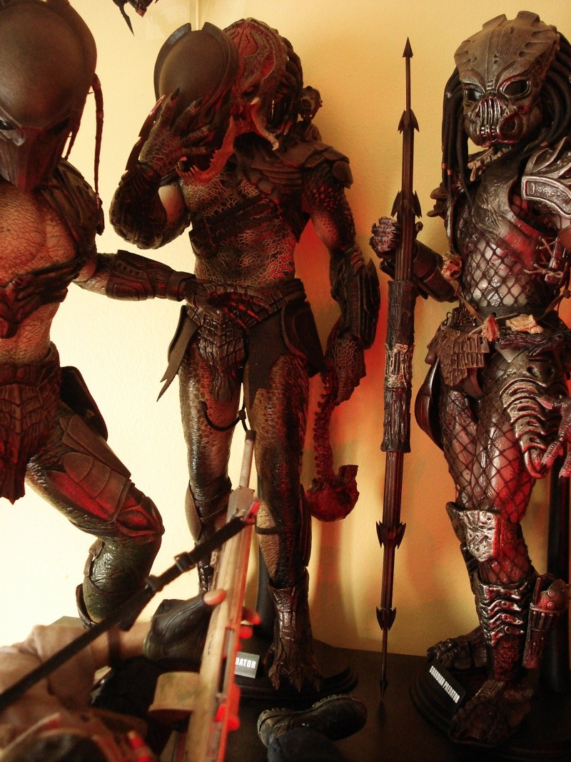 collec redfield MAJ 20/04/11 ->  Predator Family Dsc08319