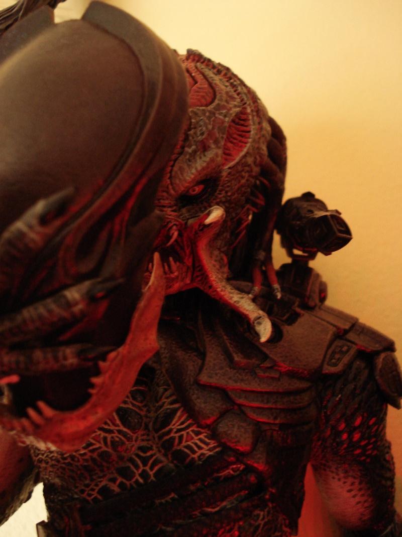 collec redfield MAJ 20/04/11 ->  Predator Family Dsc08320