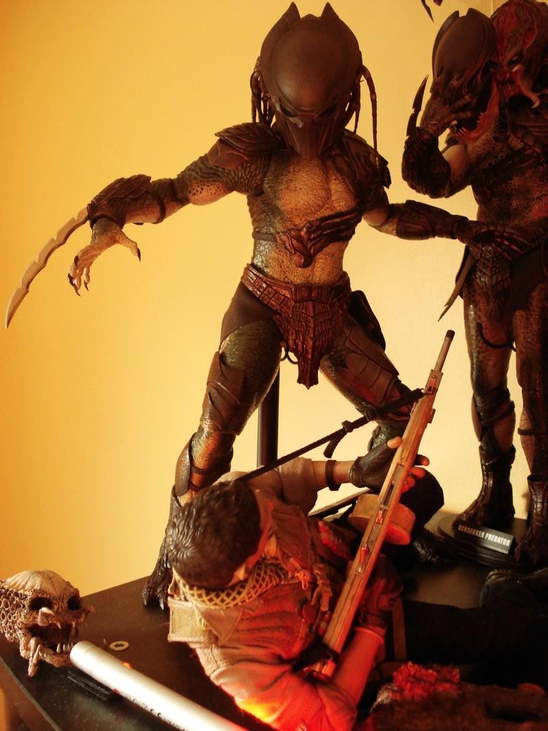collec redfield MAJ 20/04/11 ->  Predator Family Dsc08321