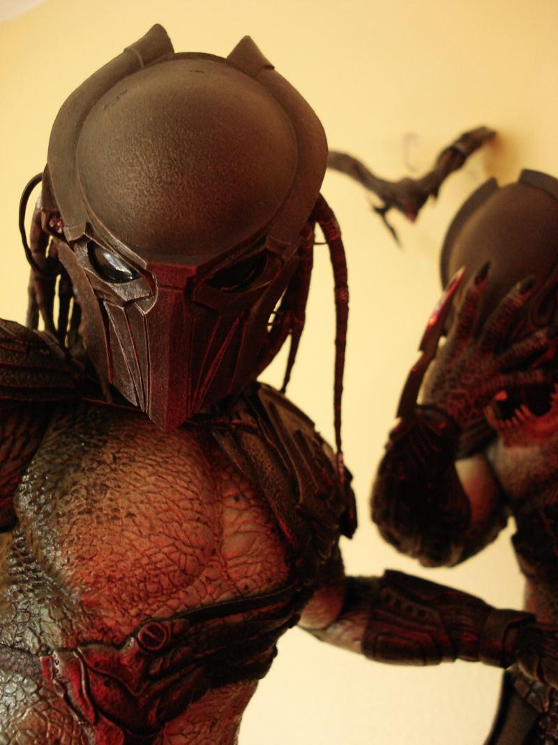 collec redfield MAJ 20/04/11 ->  Predator Family Dsc08322