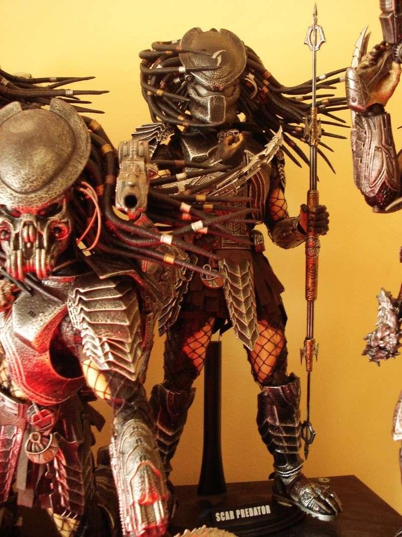 collec redfield MAJ 20/04/11 ->  Predator Family Dsc08324