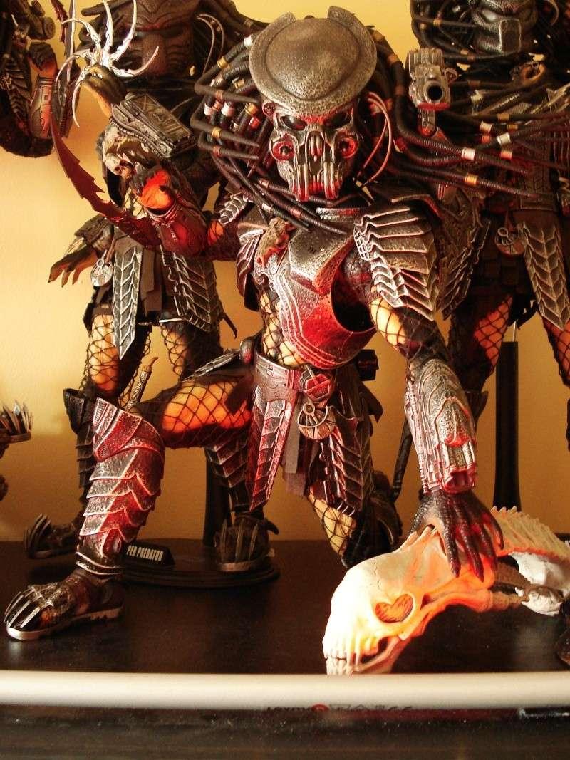 collec redfield MAJ 20/04/11 ->  Predator Family Dsc08326