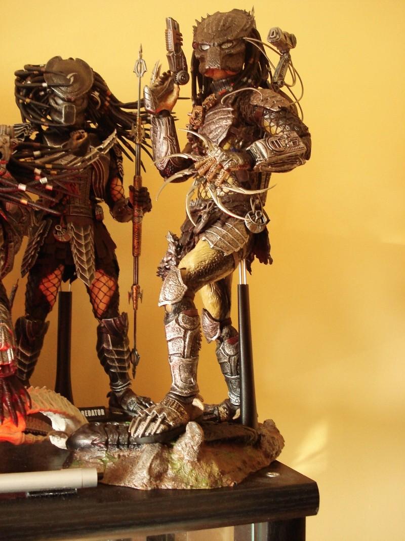 collec redfield MAJ 20/04/11 ->  Predator Family Dsc08410