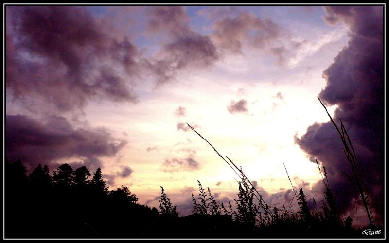 crepuscule 1soir_10