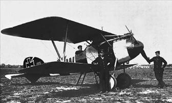 Aviones de caza alemanes de la PGM Albatr14