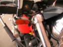 Sportster 883 R by Totallytat Indica10