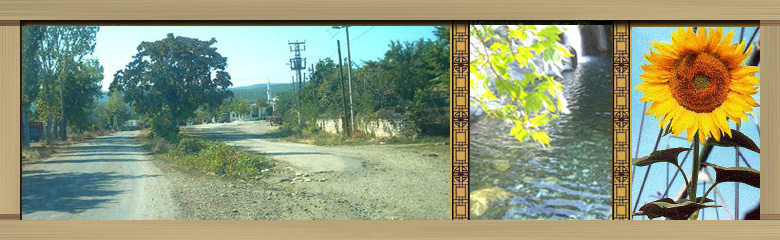 Şadıllı Köyü Forum