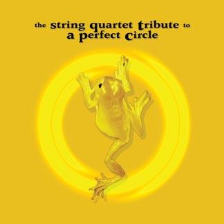 Discografia de A Perfect Circle Perfec10