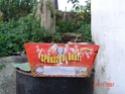 FOTO CAPODANNO 2008 Dsc00210