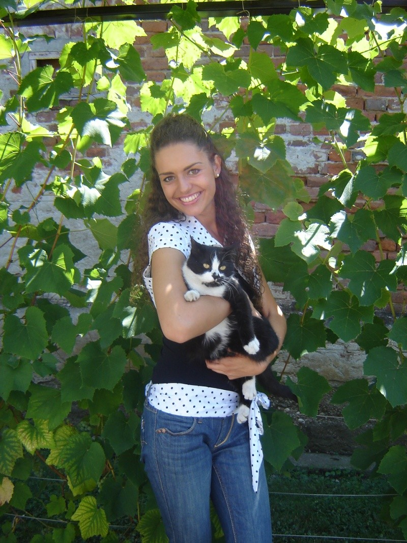 my cat Dsc01512