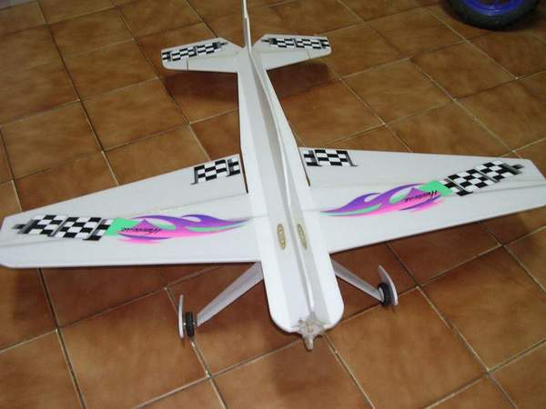 Another Foam plane for sell Dscn1321