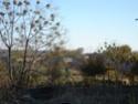 صور لقرية تل زيارات 1210
