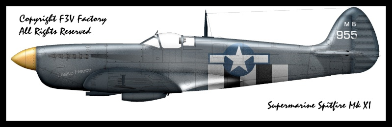 Les Spitfires donnés aux Américains Spitfi11