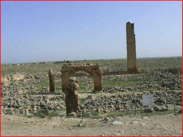 VOYAGE 2011 EN TURQUIE Harran12
