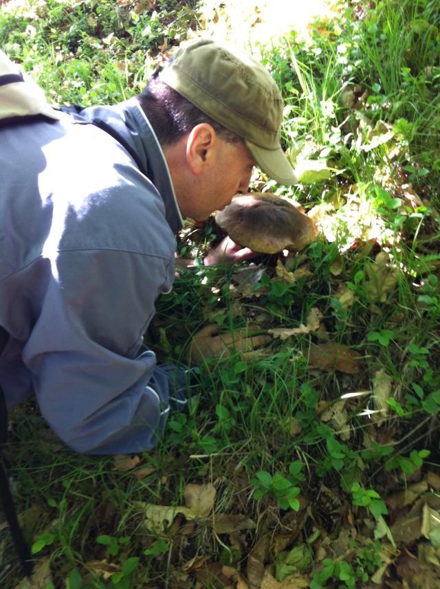 Escursione del 15.Maggio.2011 Funghi11