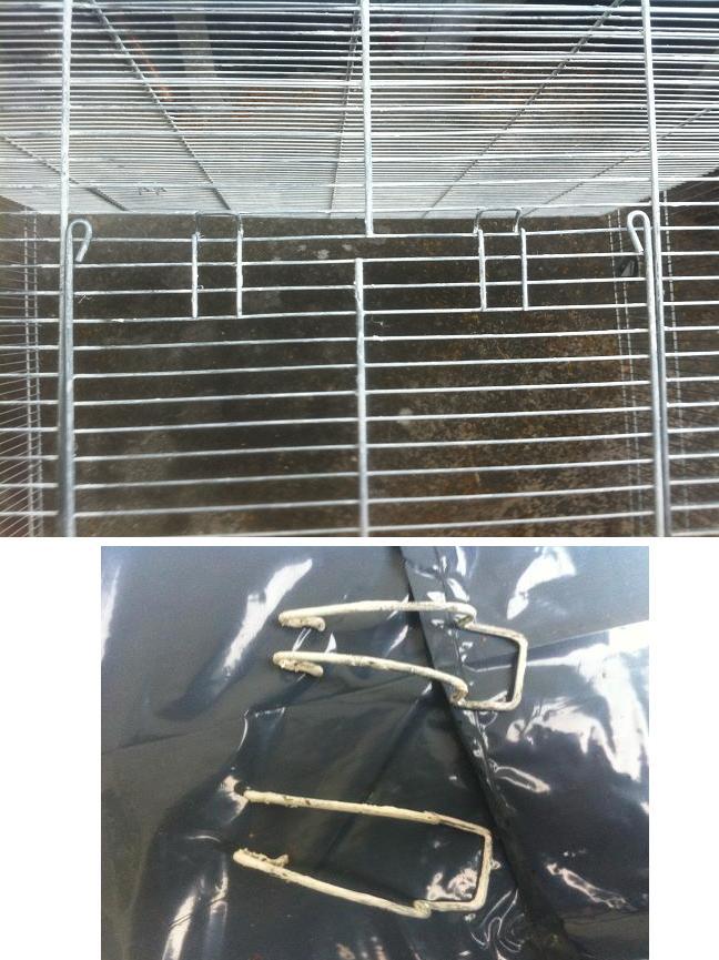 Vend cage 80*80*50 a 50 euros mais a repeindre!!!!!!! Img_1821