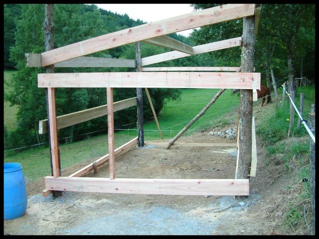 Construction d'un abri pour chevaux Dscf0011