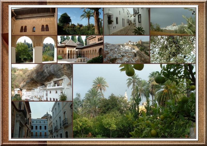 Les vacances de Marilou, notre webmaster en Andalousie...... 200010