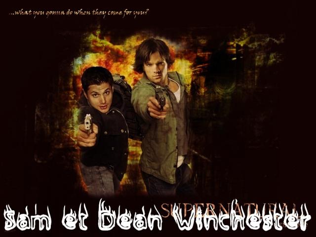 Mon forum Sam et Dean Winchester Novemb11