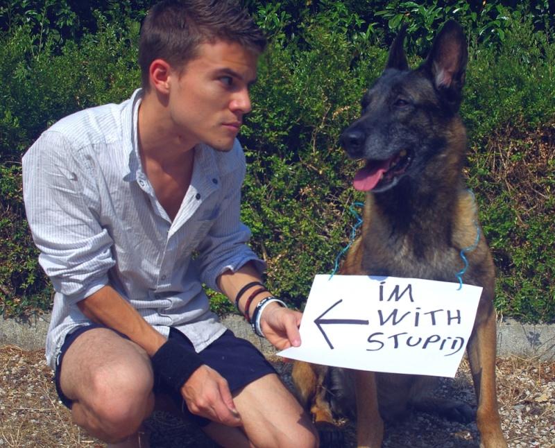 Nos amis les chiens. - Page 3 Volt_w10