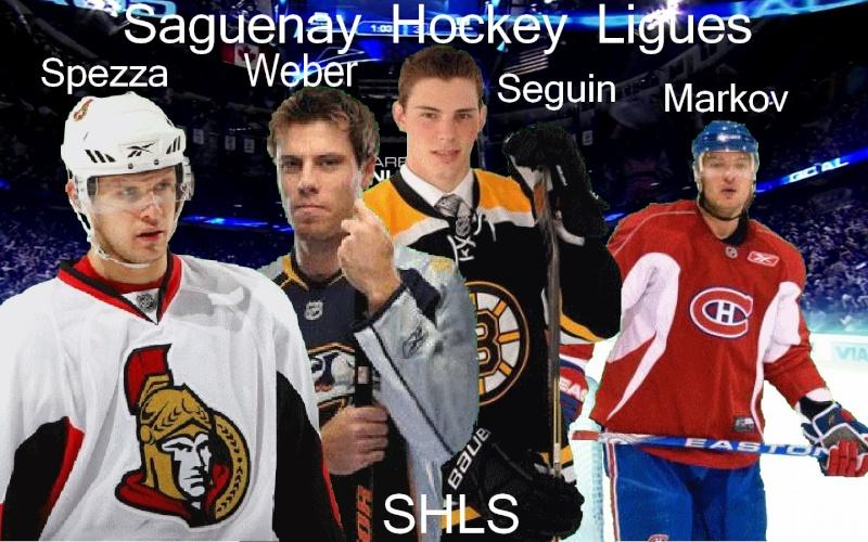SagsHockeyLigues