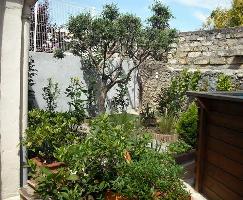 jardin de printemps Jardin11