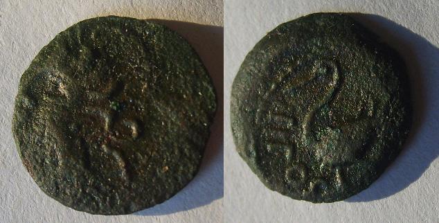 Bronze IIPOS à l 'échassier (Arvernes) Bronze12