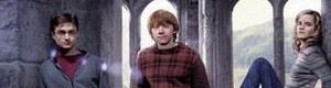 Potter Ville Rp_pou10