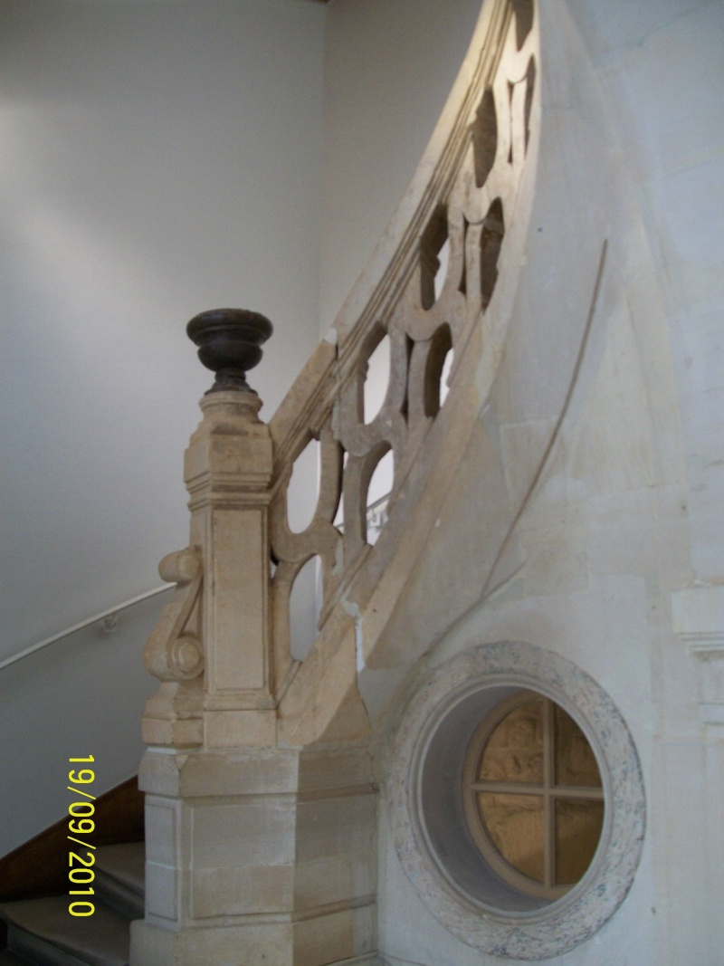 Musée du Barreau de Paris  Chat1_18
