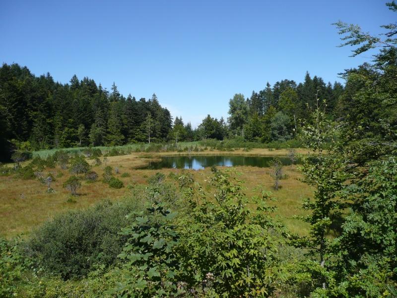 lac de Luitel P1030515