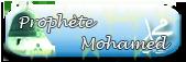 Prophète Mohamed (psl)