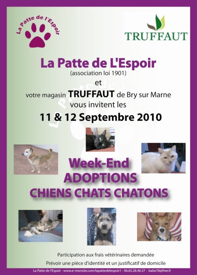 Journée adoption à Bry sur Marne (94) les 11 et 12 septembre 2010 Affich10