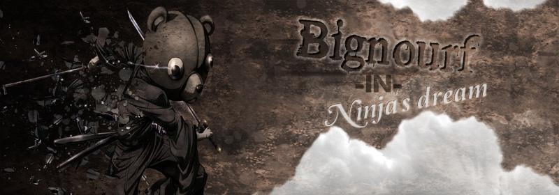 Test Bignourf Ninja11