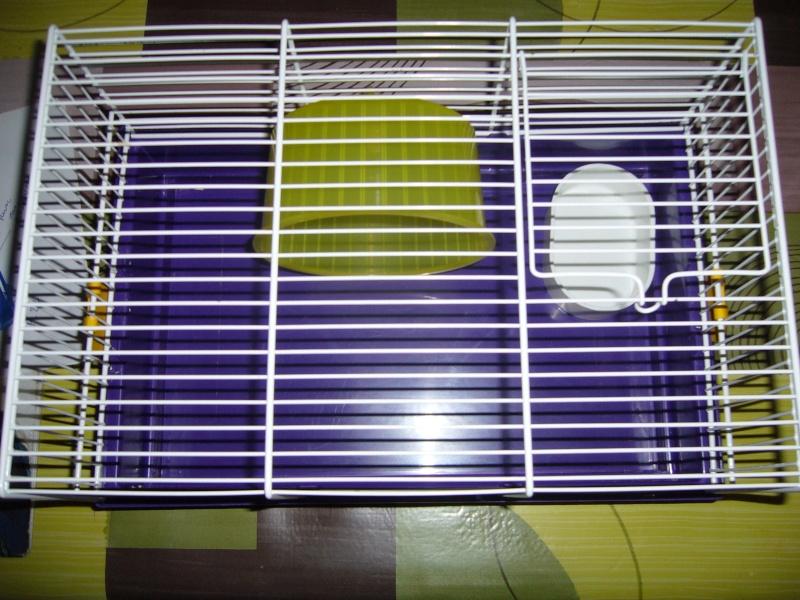 Cage dans le 59 P1080529