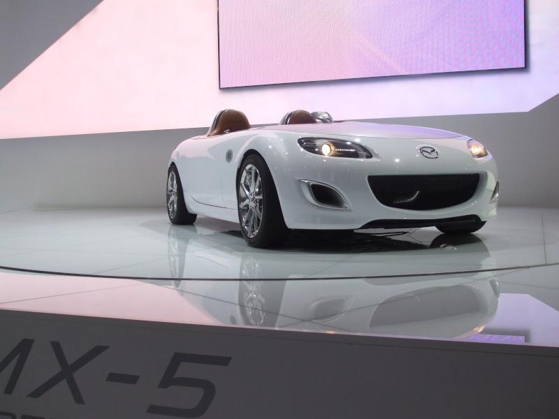Salon de l'auto 2010 ( mondial de l'auto 2010 ) Dscf2216