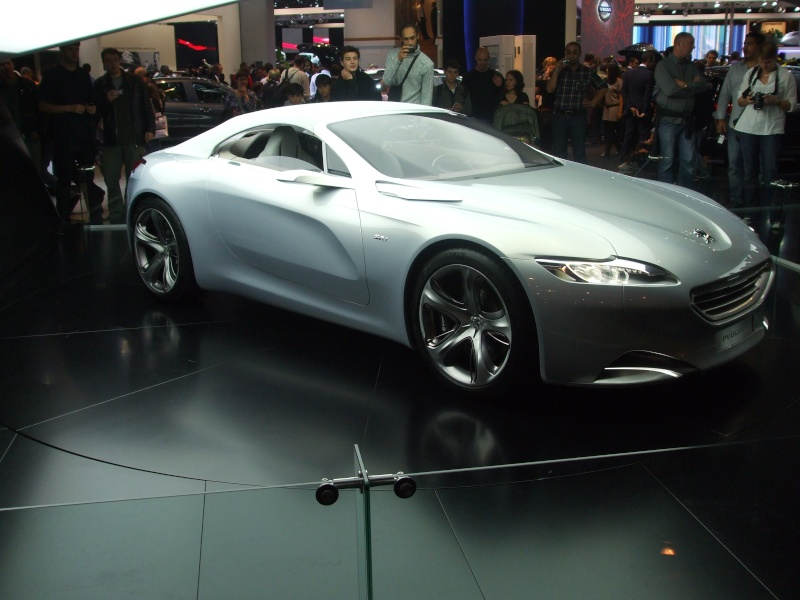 Salon de l'auto 2010 ( mondial de l'auto 2010 ) Dscf2217
