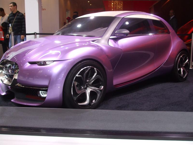 Salon de l'auto 2010 ( mondial de l'auto 2010 ) Dscf2222