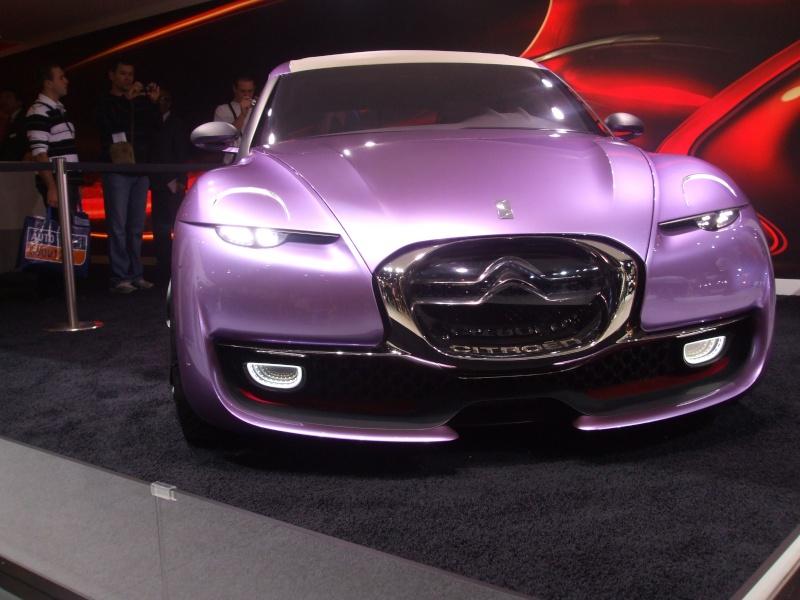 Salon de l'auto 2010 ( mondial de l'auto 2010 ) Dscf2223
