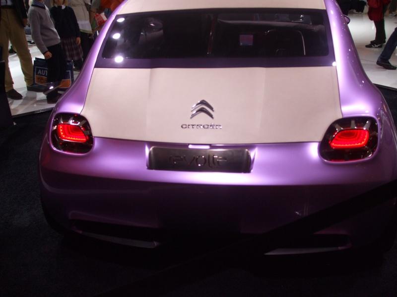 Salon de l'auto 2010 ( mondial de l'auto 2010 ) Dscf2224