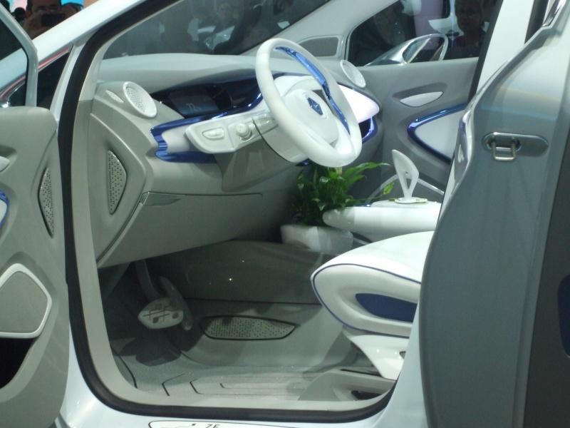Salon de l'auto 2010 ( mondial de l'auto 2010 ) Dscf2314