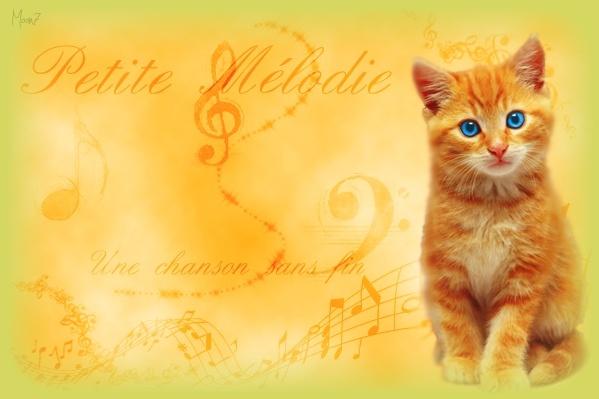Petite Mélodie >> tigre >> Chaton  Image_10