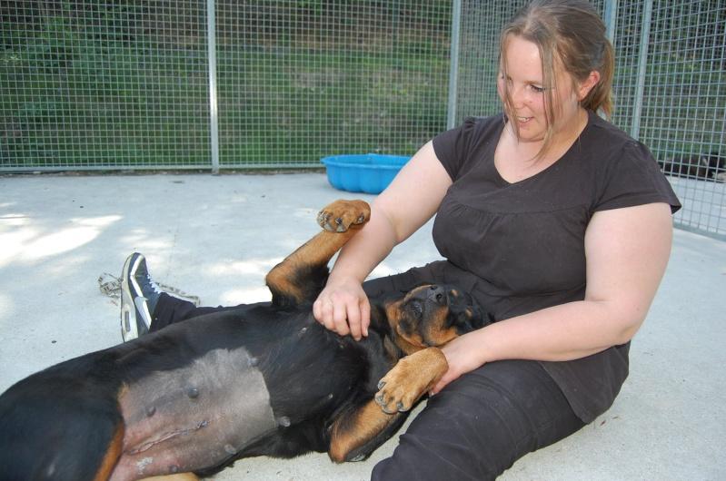 Roxanne, rott 5 ans en total délaissement (Oise) Dsc_0548